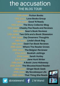 The Accusation blog tour (1) copy